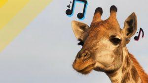 como tirar musicas de ouvido