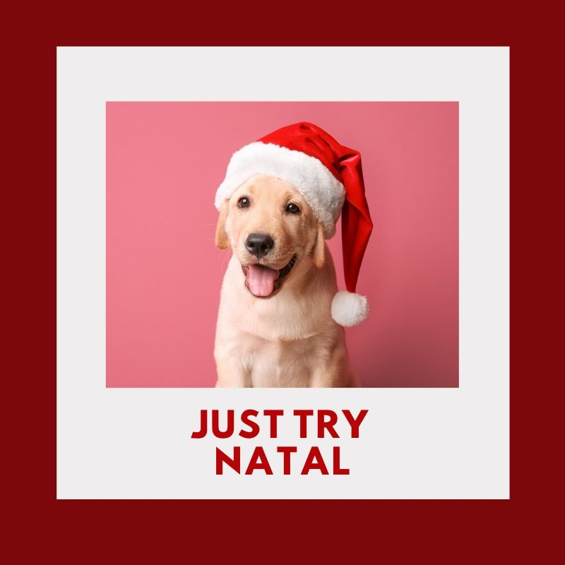 JUST TRY NATAL